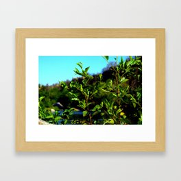 Green Leaves and a River Framed Art Print