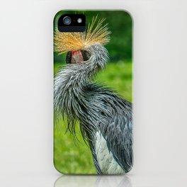 New Hair Fashion  iPhone Case