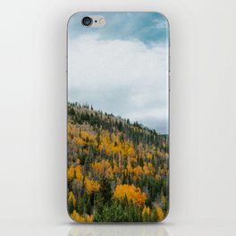 GOLD DUST iPhone Skin