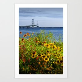 Blooming Flowers by the Bridge at the Straits of Mackinac in the Michigan Upper Peninsula No.0673 Art Print