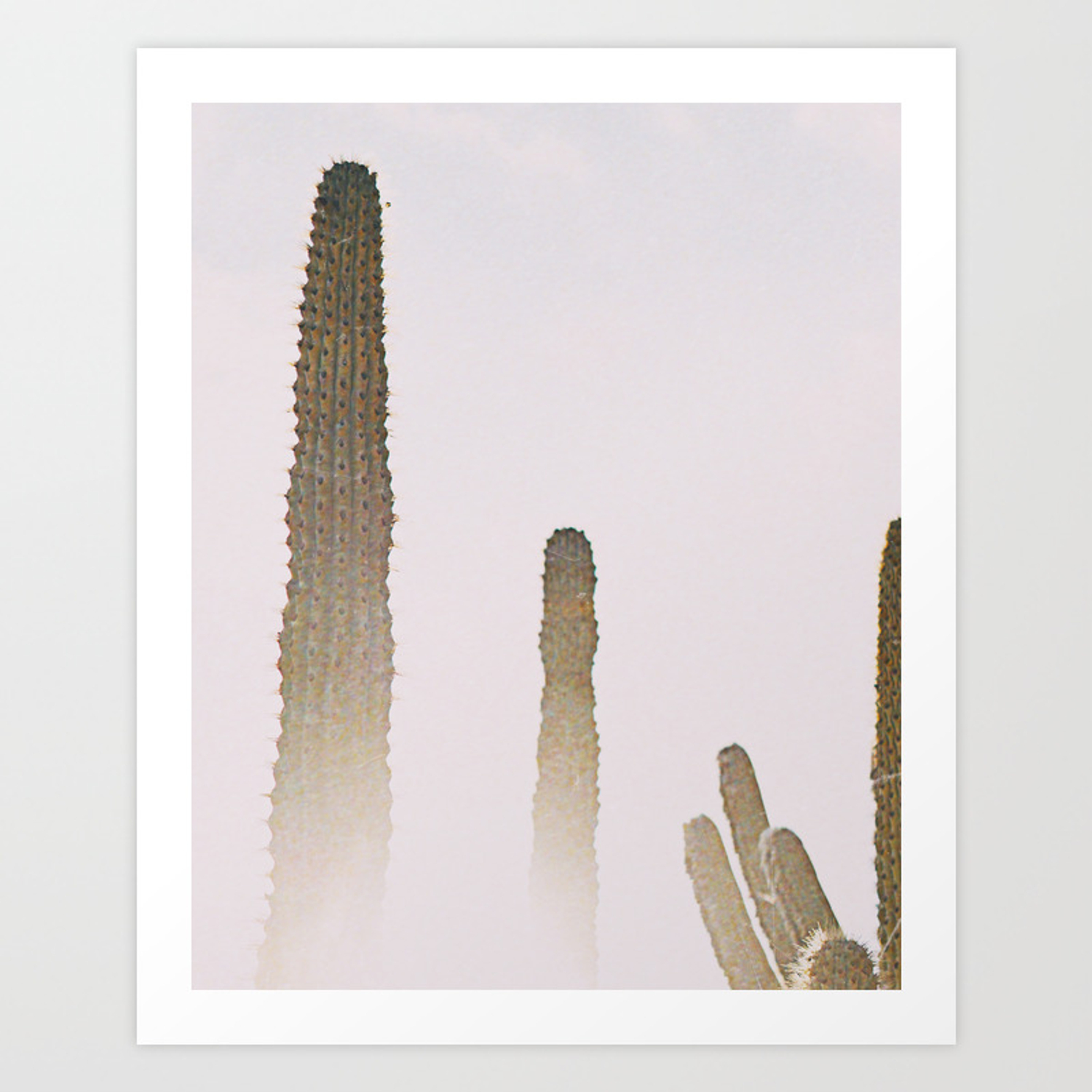 Cacti Desert Plants Neutral Minimal Modern Wall Art Art