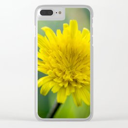 Cyprus Dandelion II Clear iPhone Case