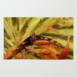 Butterfly on Crosmosia Rug