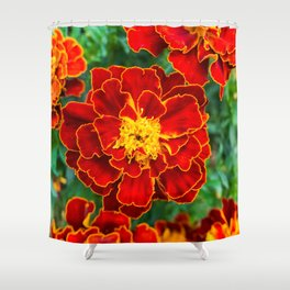 Red Tagetes lucida Shower Curtain