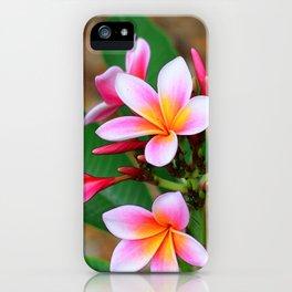 Plumeria Floral Art - Tropical Queen - Sharon Cummings iPhone Case