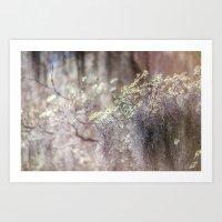 Mossy Dogwoods Art Print