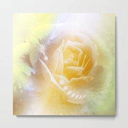 Beautiful yellow rose Metal Print
