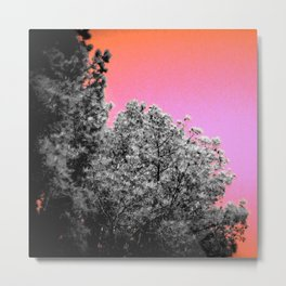 Peach Sky Gray Leaves Metal Print