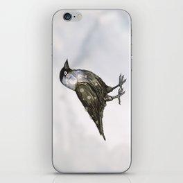 Western jackdaw iPhone Skin