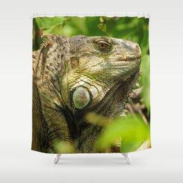Costa Rican Iguana Shower Curtain