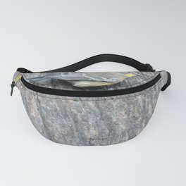 TEXTURES -- Warbler on Palm Bark Fanny Pack