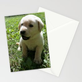 Gggrrr Yellow lab puppy Stationery Cards
