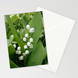 Pure White Lily of the Valley Flower Macro Photograph Stationery Cards