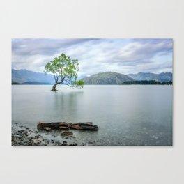 A story of beauty and survival at lake Wanaka, New Zealand. Canvas Print