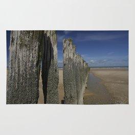 Low Tide Rug