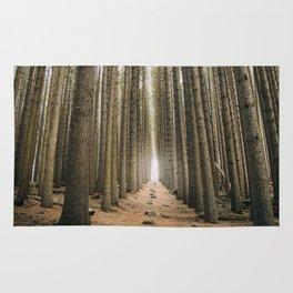 Sugar Pine Walk Rug