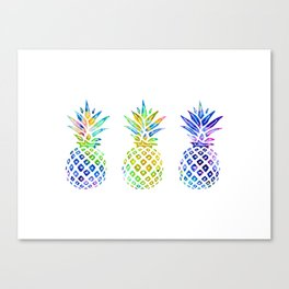 3 Rainbow Pineapples - Multicolored Canvas Print