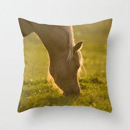 Golden light in horse's mane Throw Pillow