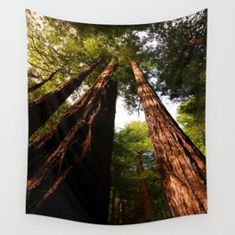 Redwood Tree Tops Wall Tapestry