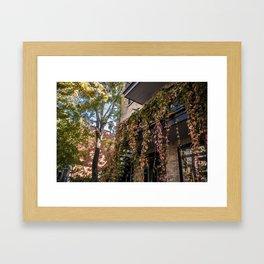 Autumn Vines Framed Art Print