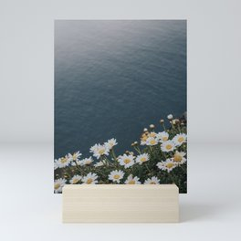 Ocean & Daisies - Landscape and Nature Photograph Mini Art Print