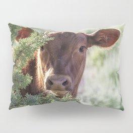 Shy Calf Pillow Sham