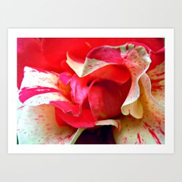 pink swirl Art Print