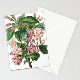 Vintage of flowers illustration Stationery Cards