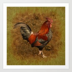 ROOSTER - 026 Art Print