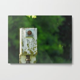 The Home is a Nest Metal Print