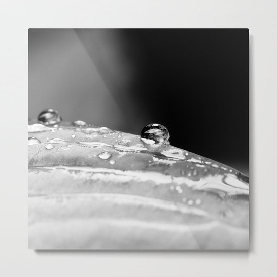 drop in black and white Metal Print