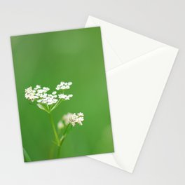 White flower Bieliczna Stationery Cards