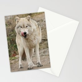 What's for dinner? Stationery Cards
