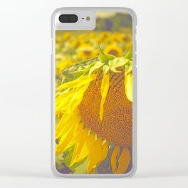 Summer Field Clear iPhone Case