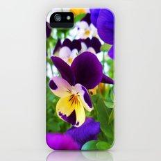 Pansies Slim Case iPhone (5, 5s)