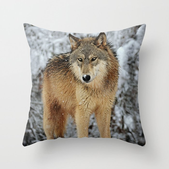 Raksha Throw Pillow