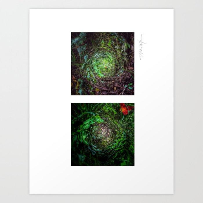 Nature's Twisted Path Art Print