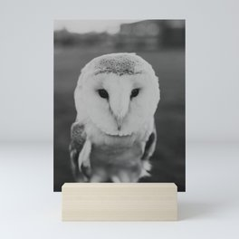 Black and White Owl Mini Art Print