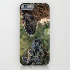 Sweet Llamas iPhone 6s Slim Case