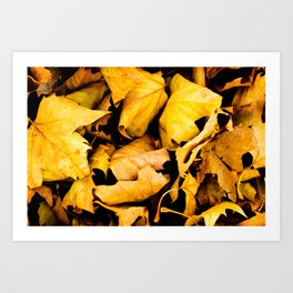 """Scattered Leaves""  Art Print"