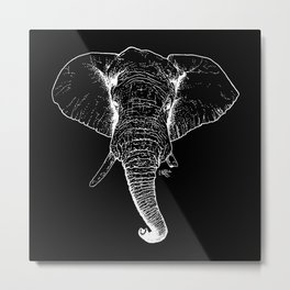 African Savanna Elephant - Inverted Metal Print