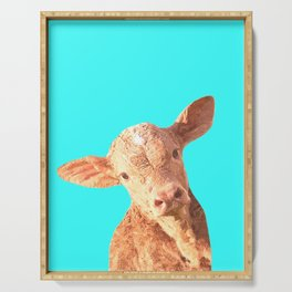 Baby Cow Turquoise Background Serving Tray