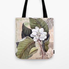 Vintage White Magnolia  Tote Bag