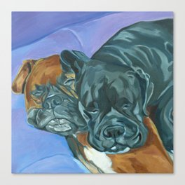 Boxer Buddies Dog Portrait Canvas Print