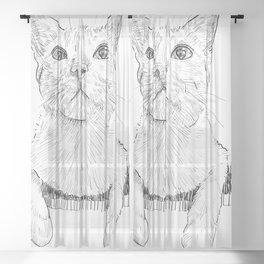 Drawing of cute cat Sheer Curtain
