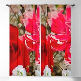 Dianthus and the Rose Blackout Curtain