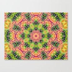 BBQSHOES: Kaleioscopic Fractal Mandala 1543K2 Canvas Print