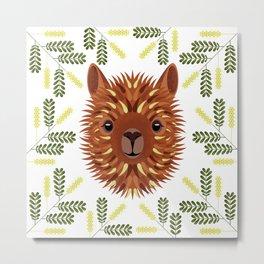 Alpaca brunette portrait. Frame of Mesquite Tree Branches Metal Print