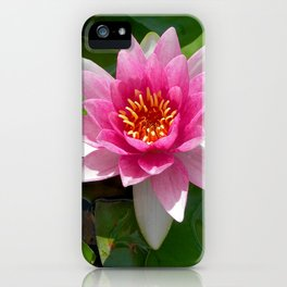 water lily VI iPhone Case
