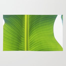 This is not banana leaf Rug